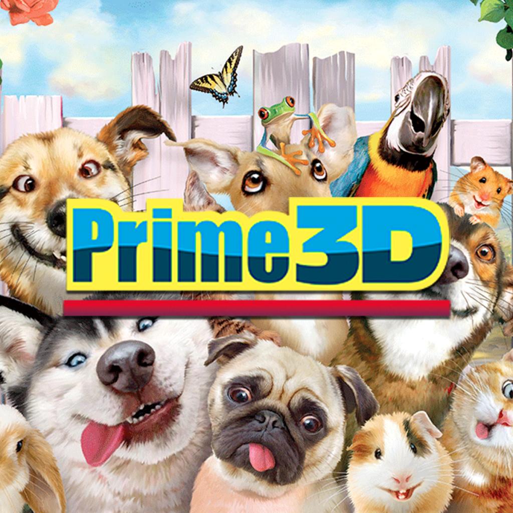 Prime 3D puzzles